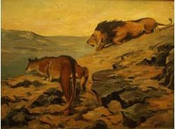 Хищники пустыни